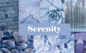 #Colortrend Serenity